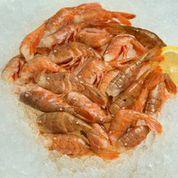 Fresh Alaskan Spot Shrimp / Large (Headless)-0